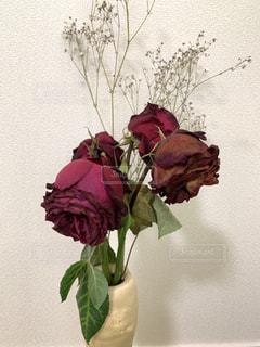 花,屋内,かすみ草,赤,花束,花瓶,バラ,枯れた花,薔薇,壁,草木,カスミソウ