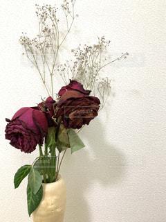 花,かすみ草,赤,花束,花瓶,バラ,枯れた花,薔薇,壁,草木,カスミソウ
