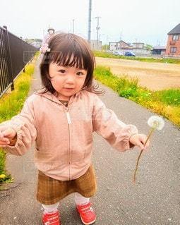 タンポポの綿毛を持つ少女の写真・画像素材[3205497]