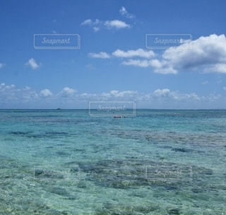 沖縄の海の写真・画像素材[3336455]