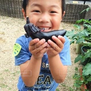 夏野菜収穫!の写真・画像素材[3660623]