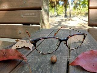 公園のベンチにメガネの写真・画像素材[3769460]