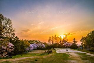 風景,公園,夕暮れ,帰り道