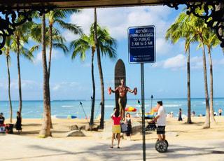 海,空,屋外,緑,ビーチ,青,砂浜,海岸,樹木,人物,ヤシの木