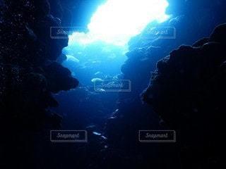 自然,海,景色,泳ぐ,洞窟,海底