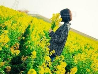 女性,自然,花,春,夏,お花畑,黄色,菜の花,田舎,景色,ボブ,草木