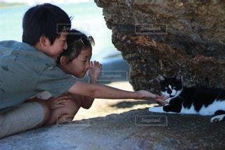 子ども,猫,自然,風景,屋外,日焼け,子供,少女,仲良し,人,旅行,野良猫,幼児,夏休み,少年,兄妹