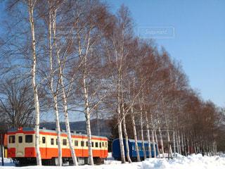 風景,空,雪,屋外,北海道,オレンジ,樹木,旅行,鉄道,車両,保存鉄道
