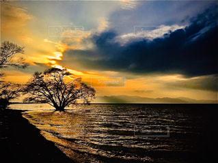 風景,夕暮れ,水面,樹木,琵琶湖