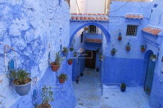 花,屋外,青,旅行,海外旅行,モロッコ