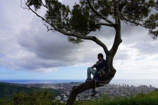 木の前で空中に飛び込む男の写真・画像素材[3220068]