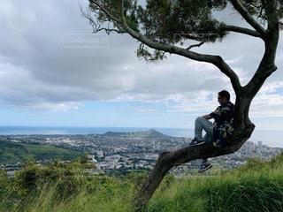 木の上でいたずらをしている男の写真・画像素材[3222616]