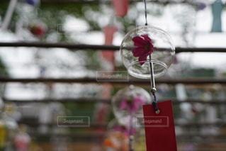 ガラスの花瓶をクローズアップするの写真・画像素材[3480767]