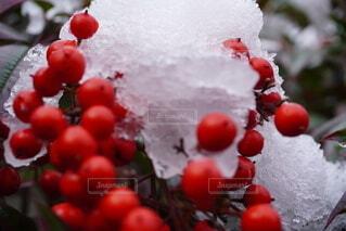 テーブルの上に果物のボウルの写真・画像素材[4033662]