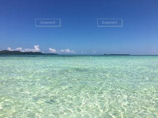 パラオの無人島の写真・画像素材[3253384]