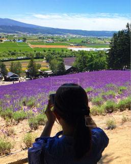 ラベンダー畑を撮る女性の写真・画像素材[3282199]