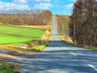 まっすぐな道の写真・画像素材[3302981]