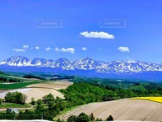 丘からの風景の写真・画像素材[3336909]