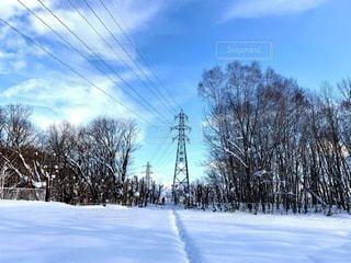 雪景色の写真・画像素材[3348841]