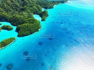 パラオの海の写真・画像素材[3357265]