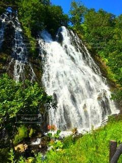 木々に囲まれた滝の写真・画像素材[3490637]