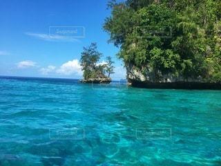パラオの海の写真・画像素材[3552911]