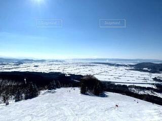 自然,空,冬,雪,屋外,北海道,樹木,スキー,運動,快晴,スキー場,冷たい,斜面,ウィンタースポーツ,日中,高台