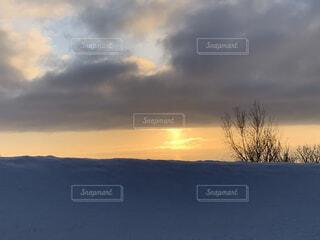 自然,風景,空,雪,屋外,太陽,朝日,雲,北海道,丘,樹木,正月,寒い,お正月,日の出,新年,初日の出