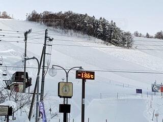 自然,空,冬,雪,屋外,北海道,樹木,スキー,寒い,運動,ゲレンデ,スキー場,斜面,温度計,ウィンタースポーツ,日中,マイナス