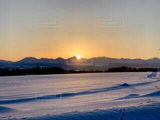 自然,風景,空,冬,雪,屋外,朝日,晴れ,北海道,山,雪原,オレンジ,丘,樹木,正月,田園,朝,寒い,お正月,日の出,冷たい,新年,初日の出,草木,美瑛