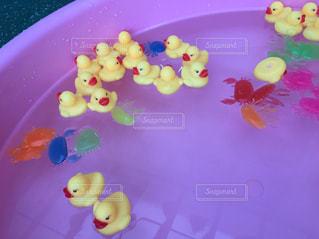 夏,水,鮮やか,遊ぶ,アヒル,グッズ,プラスチック