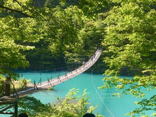 つり橋の写真・画像素材[3215117]