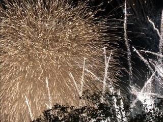 空の花火の写真・画像素材[3617394]