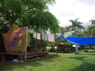 自然,庭,海外,景色,ハワイ,オーガニック,遊び場,ガーデン
