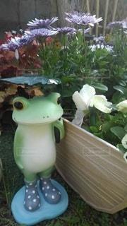 花,傘,緑,ガーデニング,置物,長靴,カエル,蛙,雨降り,草木