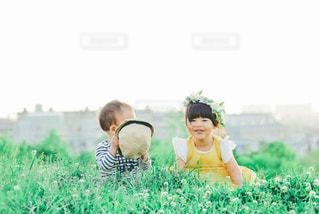 背の高いシロツメクサと少女の写真・画像素材[3199539]