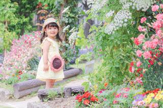 お庭をお散歩の写真・画像素材[3282636]