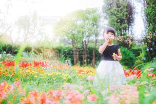 お花畑でしゃぼん玉の写真・画像素材[3571747]
