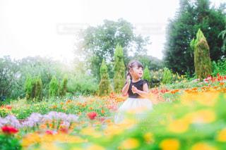 お花畑の写真・画像素材[3571756]