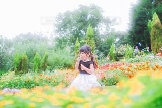 夏のお花畑の写真・画像素材[3571844]