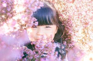 春の匂いの写真・画像素材[4095790]