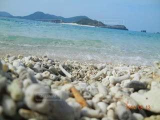 自然,風景,海,空,屋外,砂,ビーチ,サンゴ,岩,珊瑚,慶良間