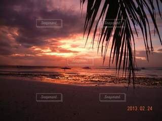 自然,海,空,太陽,ビーチ,夕暮れ,水面,海岸,樹木,ヤシの木,フォトジェニック,ヴァカンス