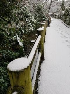 冬,雪,屋外,木の柵