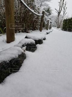 雪,屋外,歩道,木の柵