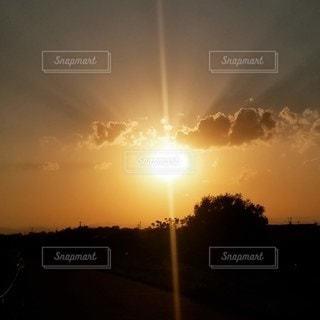 空,太陽,雲,夕暮れ,樹木