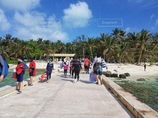 自然,風景,空,ビーチ,砂浜,海岸,樹木,人物,人,ヤシの木,昼間