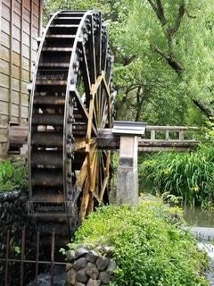 橋,屋外,川,樹木,水車,草木