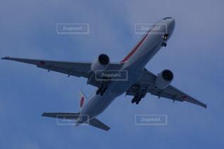 青い空を飛んでいる政府専用機の写真・画像素材[3259650]