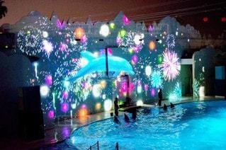 屋内,水族館,ライトアップ,明るい,点灯